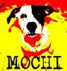 Mochi_2011
